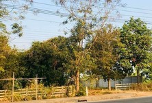 For Sale Land 1,616 sqm in Wiang Pa Pao, Chiang Rai, Thailand