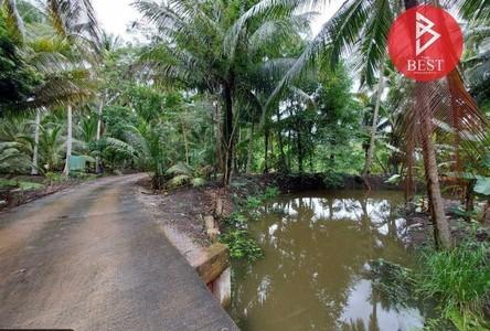 For Sale Land 3,200 sqm in Damnoen Saduak, Ratchaburi, Thailand