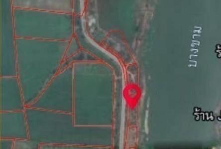 For Sale Land 4,800 sqm in Ban Mi, Lopburi, Thailand