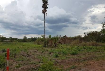 For Sale Land 1,602 sqm in Mueang Kamphaeng Phet, Kamphaeng Phet, Thailand