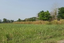 For Sale Land 916 sqm in Mueang Kamphaeng Phet, Kamphaeng Phet, Thailand