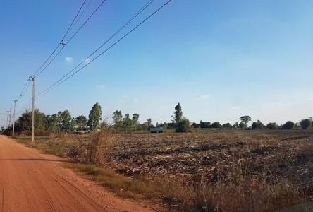 For Sale Land 58,640 sqm in Khanu Woralaksaburi, Kamphaeng Phet, Thailand