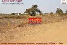 For Sale Land 240 sqm in Mueang Kamphaeng Phet, Kamphaeng Phet, Thailand