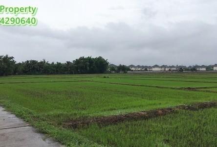 For Sale Land 59,200 sqm in Mae Rim, Chiang Mai, Thailand