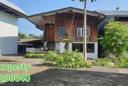 For Sale or Rent Land 2,648 sqm in Hang Dong, Chiang Mai, Thailand
