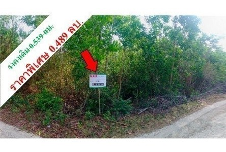 For Sale Land in Chana, Songkhla, Thailand