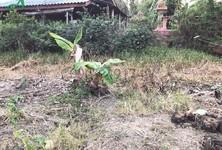 ขาย หรือ เช่า ที่ดิน 348 ตรม. บางบัวทอง นนทบุรี