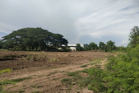 For Rent Land 6,688 sqm in Khlong Luang, Pathum Thani, Thailand