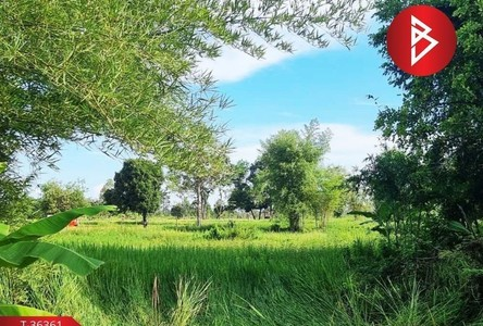 For Sale Land 7,404 sqm in Seka, Bueng Kan, Thailand