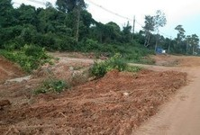 For Sale Land 39,200 sqm in Bueng Kan, Northeast, Thailand