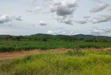 For Sale Land 3,200 sqm in Dan Chang, Suphan Buri, Thailand