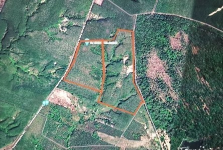 For Sale Land 378,196 sqm in Phon Charoen, Bueng Kan, Thailand