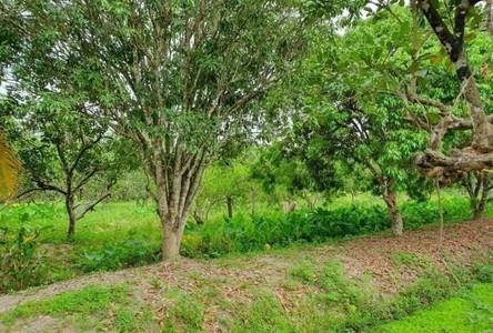 For Sale Land in Amphawa, Samut Songkhram, Thailand