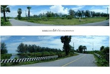 For Sale Land 6,536 sqm in Ranot, Songkhla, Thailand
