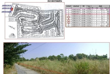 For Sale Land 1,648 sqm in Ongkharak, Nakhon Nayok, Thailand