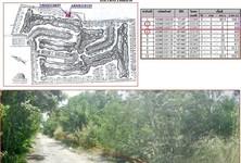 For Sale Land 1,600 sqm in Ongkharak, Nakhon Nayok, Thailand