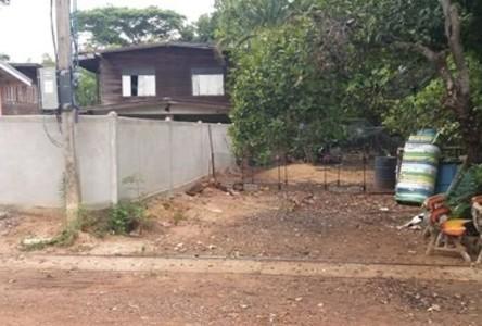 For Sale House 260 sqm in Loeng Nok Tha, Yasothon, Thailand