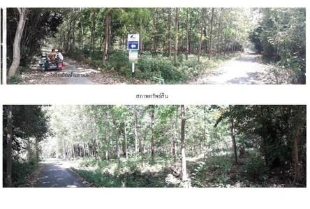 For Sale Land 18,228 sqm in Ko Lanta, Krabi, Thailand