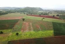 For Sale Land 16,000 sqm in Pak Chong, Nakhon Ratchasima, Thailand