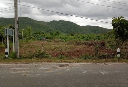 For Sale Land 80,000 sqm in Mueang Lamphun, Lamphun, Thailand