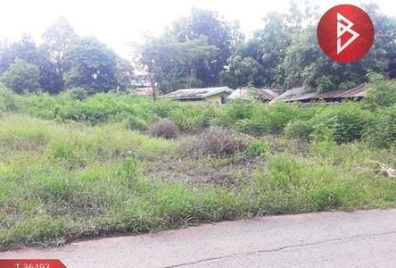 For Sale Land 916 sqm in Kaeng Khro, Chaiyaphum, Thailand