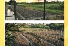 For Sale Land 32,000 sqm in Bang Bon, Bangkok, Thailand