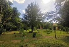 For Sale Land 12,472 sqm in Mae Rim, Chiang Mai, Thailand