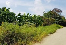 For Sale Land 328 sqm in Suwannaphum, Roi Et, Thailand