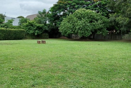 For Sale Land 1,536 sqm in Mueang Chiang Mai, Chiang Mai, Thailand