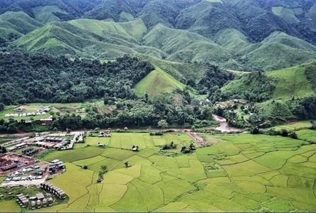 For Sale Land in Bokuai, Nan, Thailand