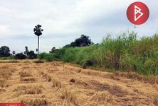 For Sale Land 25,371.2 sqm in Chaiyo, Ang Thong, Thailand