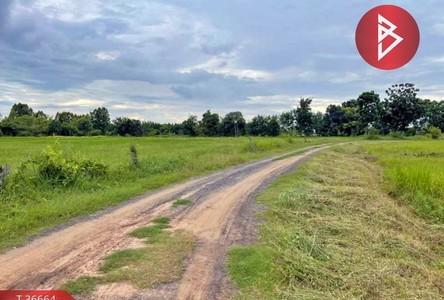 For Sale Land 20,080 sqm in Mueang Surin, Surin, Thailand