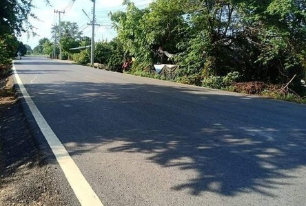For Sale Land 4,800 sqm in Mueang Lamphun, Lamphun, Thailand