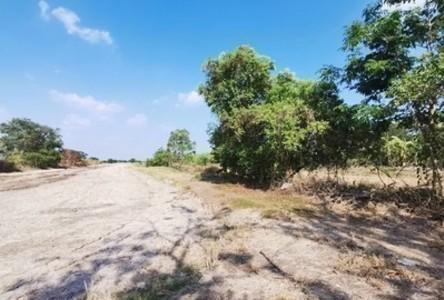 For Sale Land 80,000 sqm in Nong Suea, Pathum Thani, Thailand