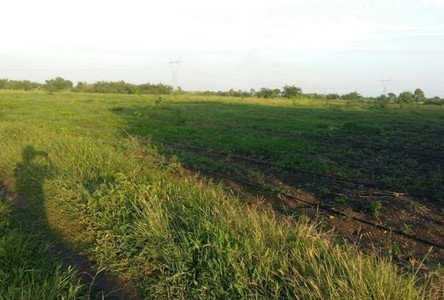 For Sale Land 48,000 sqm in Takhli, Nakhon Sawan, Thailand
