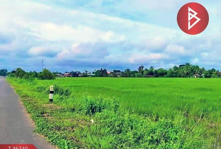 For Sale Land 7,072 sqm in Benchalak, Sisaket, Thailand