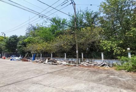 For Sale Land 188 sqm in Thawi Watthana, Bangkok, Thailand