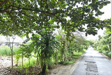 For Sale Land 1,048 sqm in Taling Chan, Bangkok, Thailand