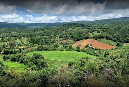 For Sale Land 134,400 sqm in Tha Li, Loei, Thailand