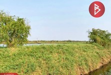 For Sale Land 67,840 sqm in Bang Pakong, Chachoengsao, Thailand
