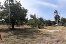 For Sale Land 202.4 sqm in Sam Roi Yot, Prachuap Khiri Khan, Thailand