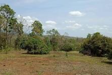 For Sale Land 28,692 sqm in Doi Saket, Chiang Mai, Thailand