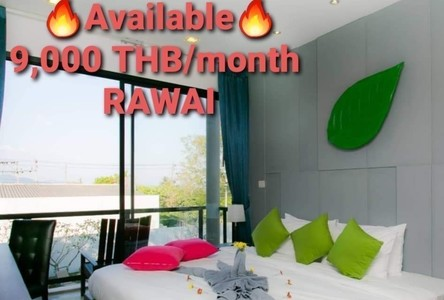 For Rent House 30 sqm in Mueang Phuket, Phuket, Thailand