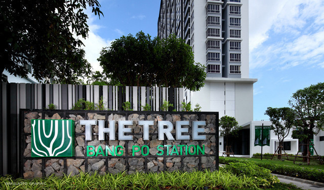 The Tree  Bang Po Station