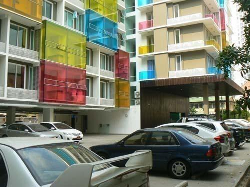The Colory Vivid