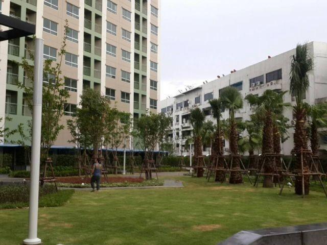 Lumpini Park Rama 9 - Ratchada